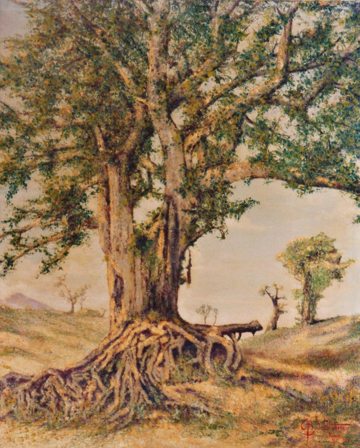 quadri africani paesaggi sicomoro Keren olio su tela Sabbatino