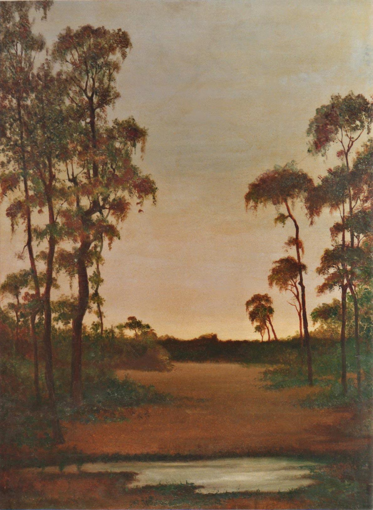 quadri africani eucaliptus eritrea paesaggio olio su tela Sabbatino