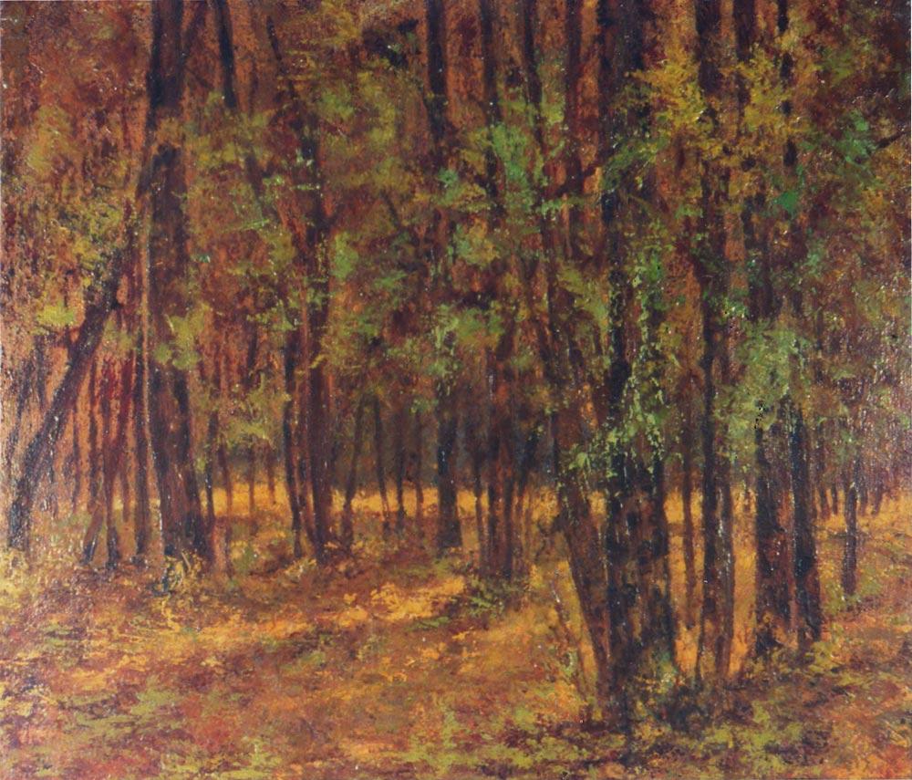 quadro olio su tela foresta Sabbatino