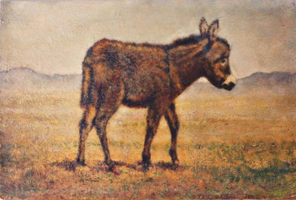 quadri di animali asinello faesite Sabbatino