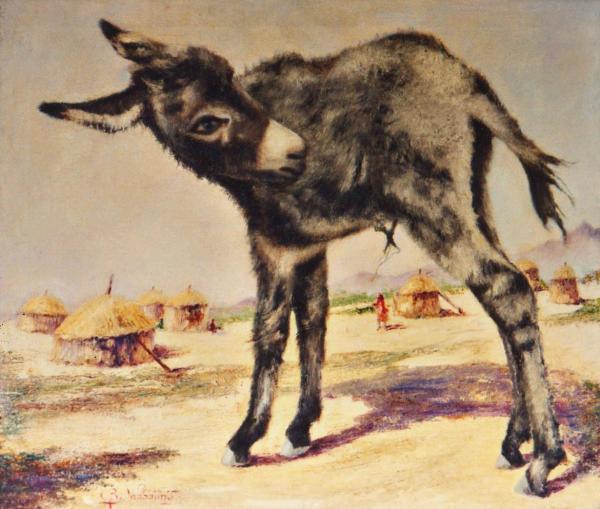 quadri animali asinello olio tela Sabbatino