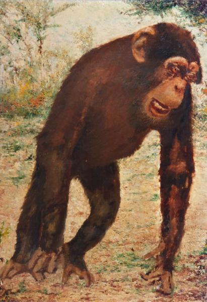 quadri animali scimpanze africa faesite Sabbatino