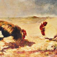 quadri animali galli olio tela Sabbatino