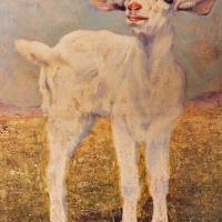 quadri animali capretto olio tela Sabbatino