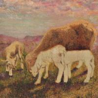 pecore quadri animali fatti a mano Sabbatino